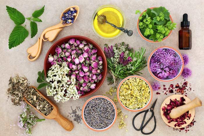 Aceites Esenciales en el Embarazo y Parto: ¿Qué son? ¿Qué aceites son seguros y cuáles evitar? ¿Qué dicen los estudios y qué recomiendan las profesionales de la aromaterapia?